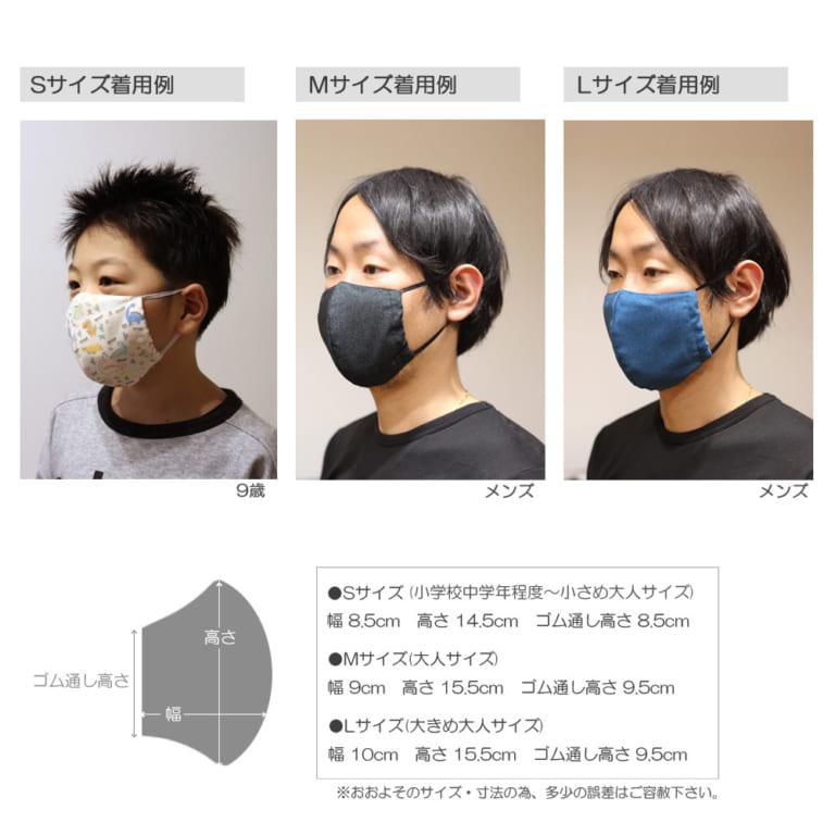 crm-mask2